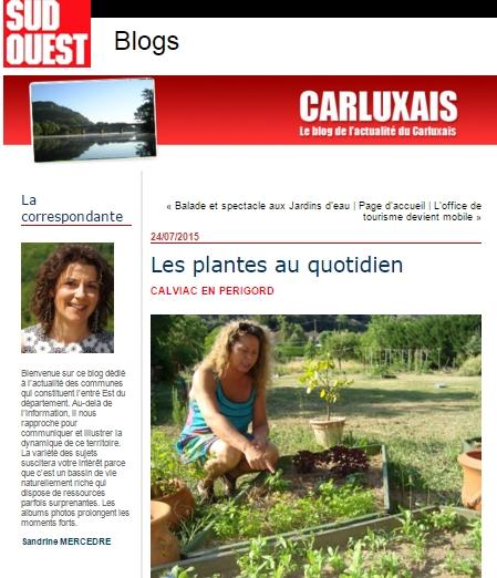 Catherine Heine, Plantes et découvertes, phytothérapie