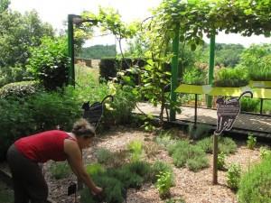 Le jardin des simples à Limeuilh