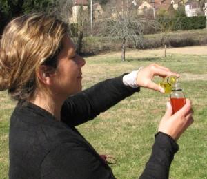 mars 2012 preparations 010 Plantes et découvertes